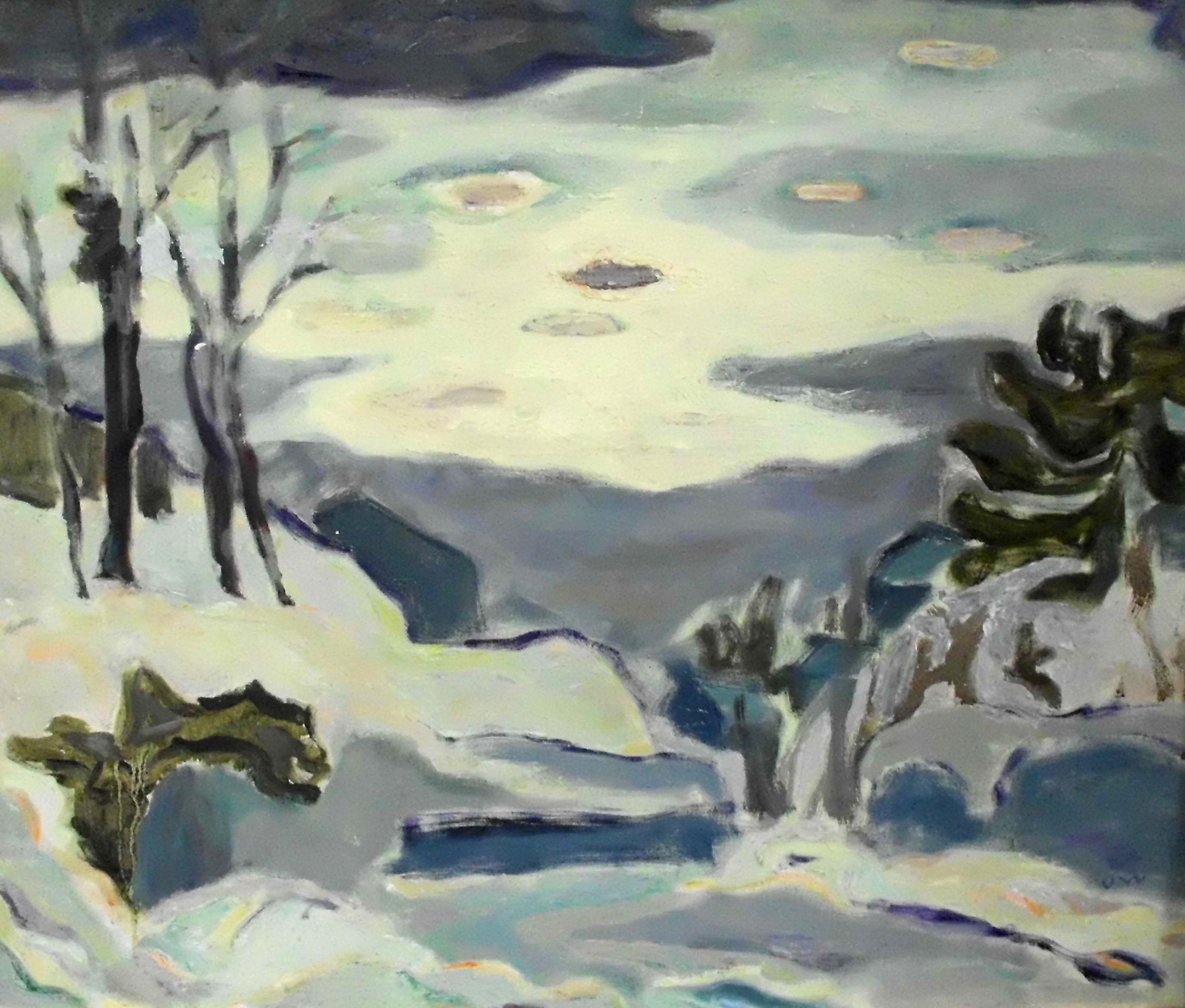 Ute Wittig - Nach einem Schneegewitter