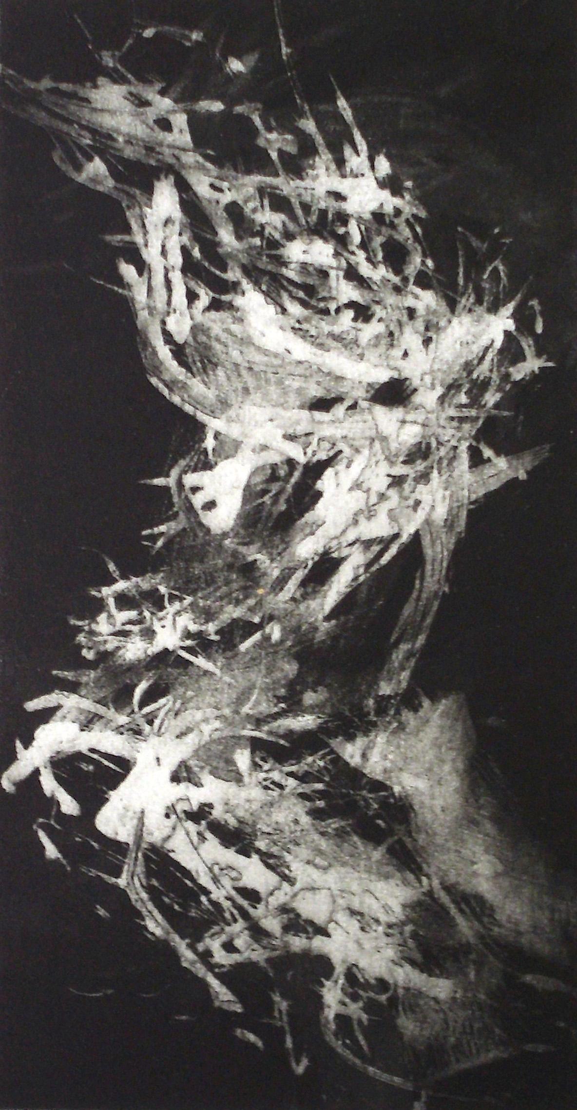 01-kerstin_franke-gneuss-aphrodite-2013-aussprenge_aquatintaradierung-33.9x17.8