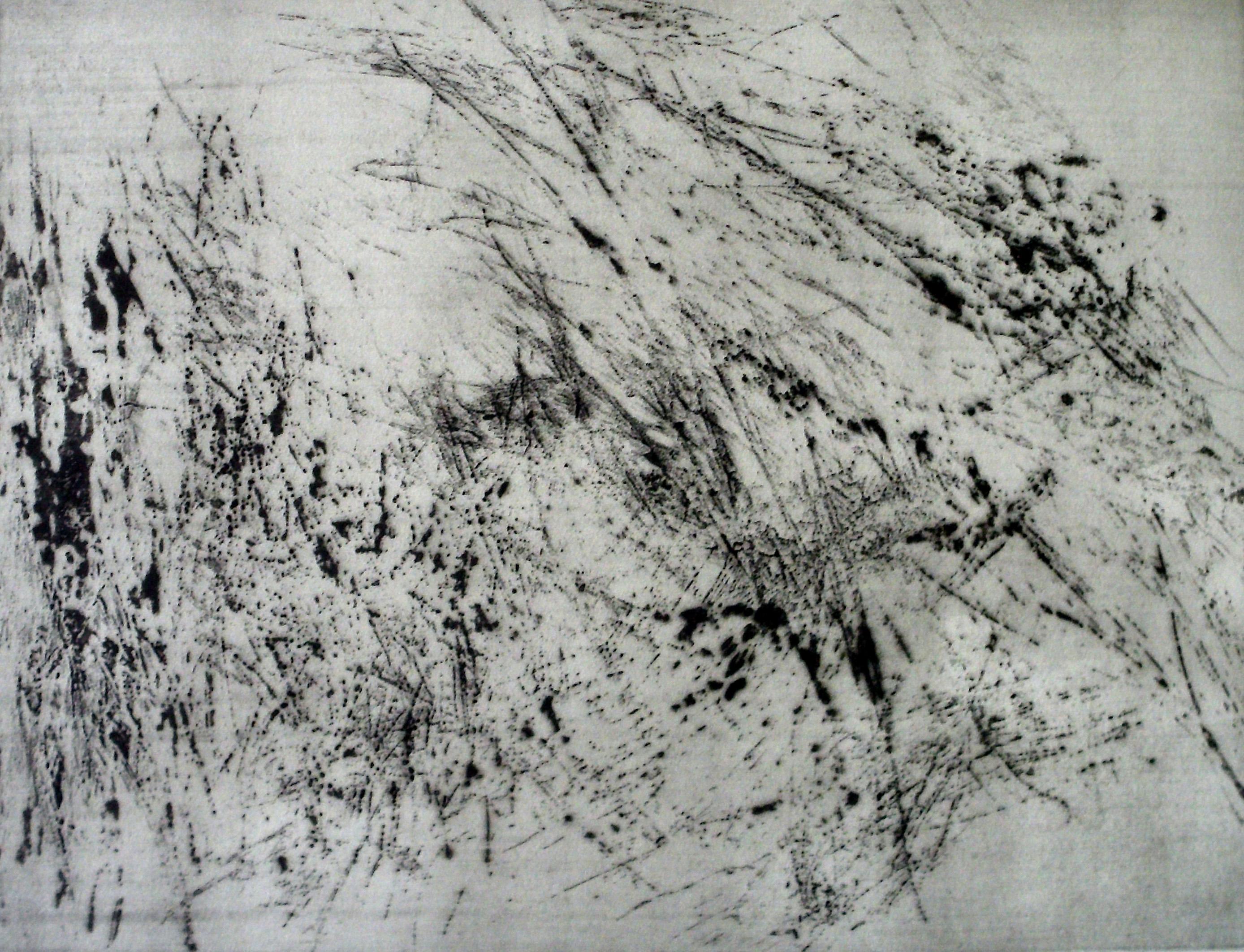 03-kerstin_franke-gneuss-verweht-2012-reservage-45.1x64.4