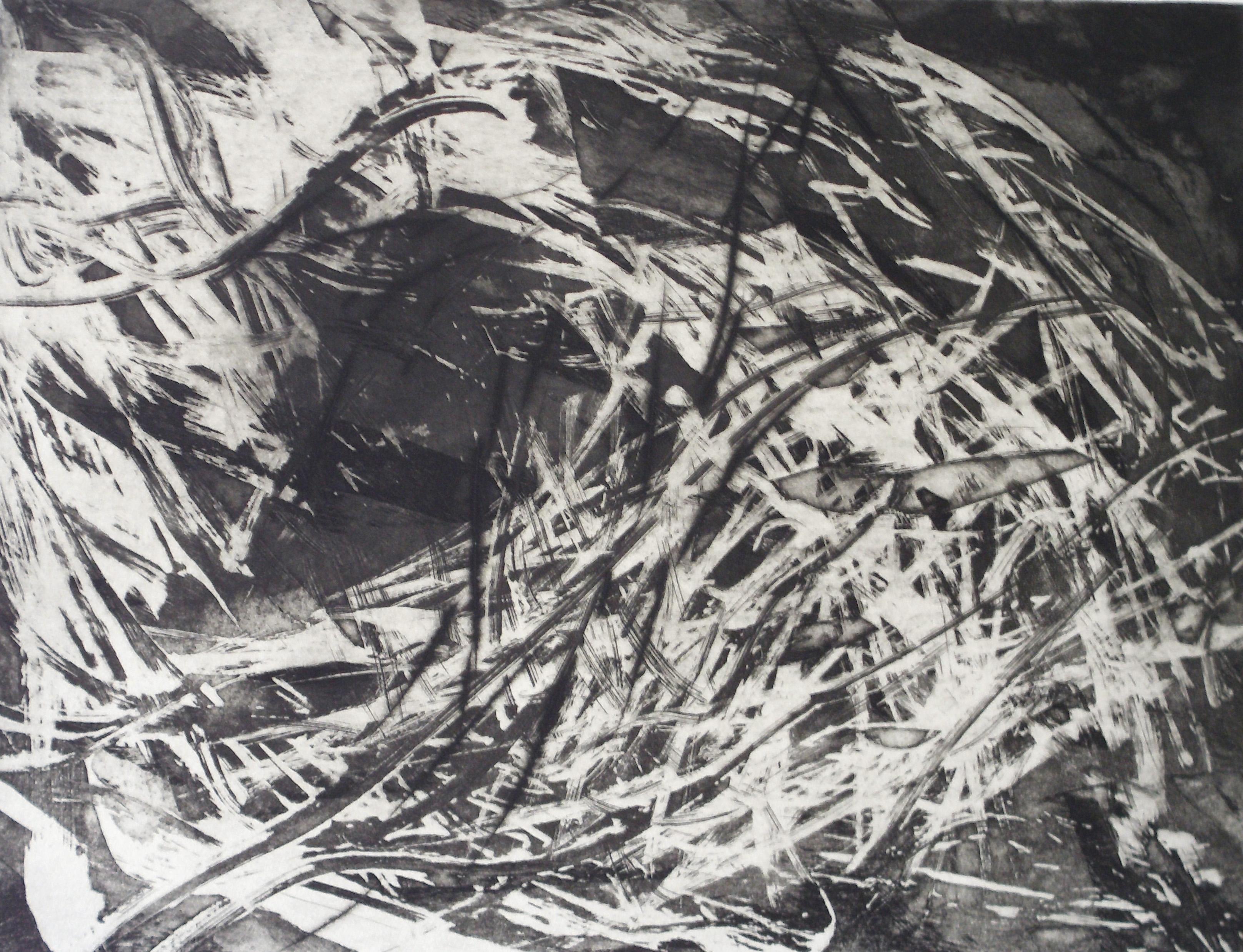 16-kerstin_franke-gneuss-windbruch-2011-aquatinta_kaltnadelradierung-45.2x60.4