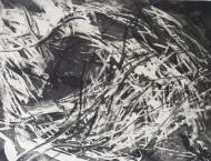 kerstin_franke-gneuss-windbruch-2011-aquatinta_kaltnadelradierung-45-2x60-4